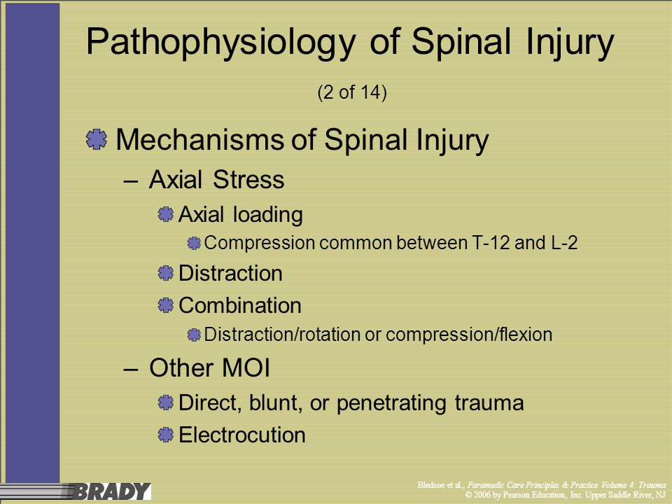 Pathophysiology of Spinal Injury (2 of 14)
