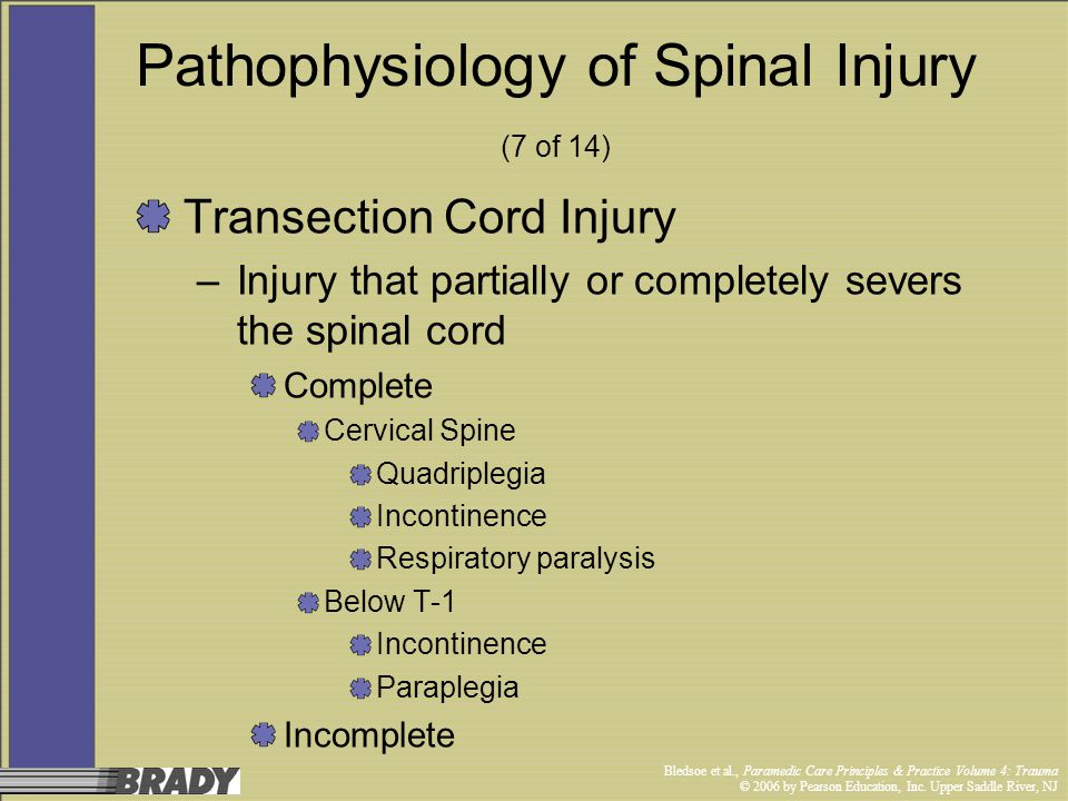 Pathophysiology of Spinal Injury (7 of 14)