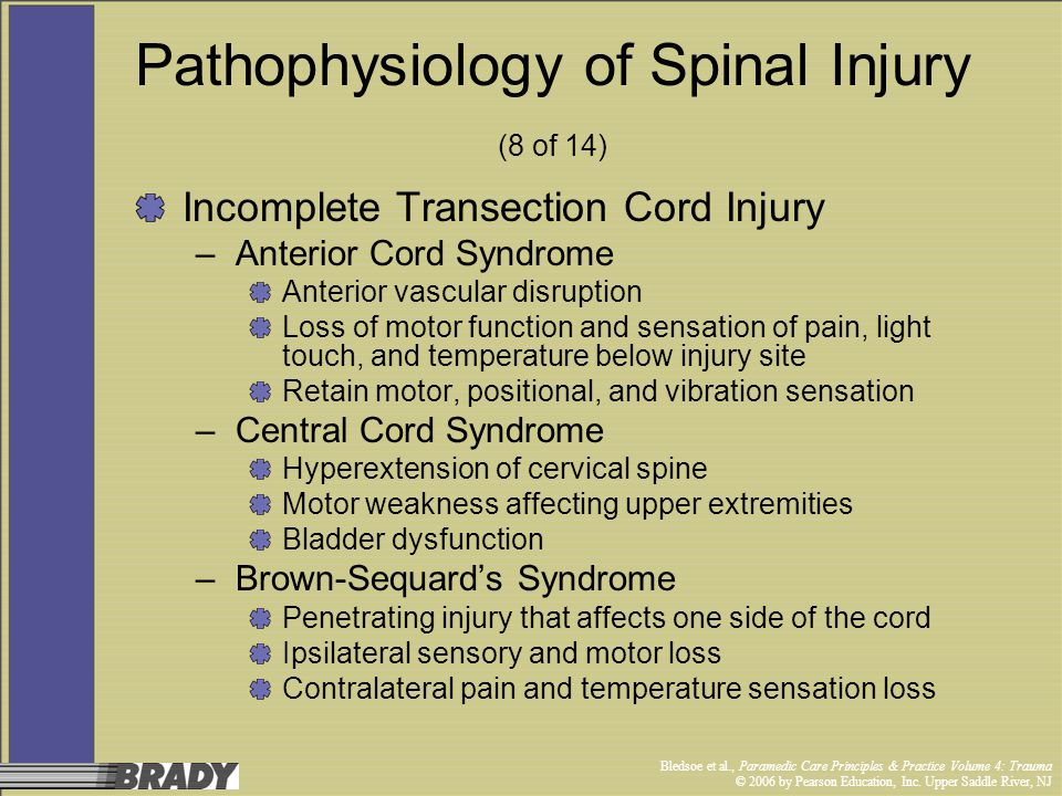 Pathophysiology of Spinal Injury (8 of 14)