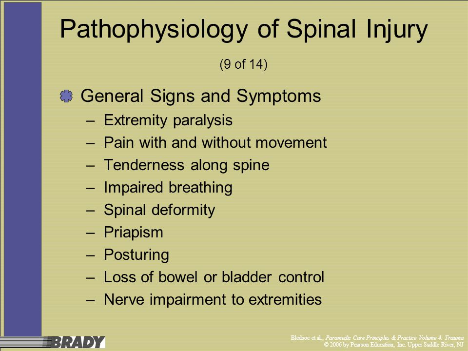 Pathophysiology of Spinal Injury (9 of 14)