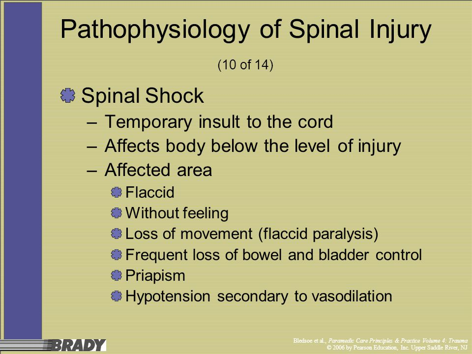 Pathophysiology of Spinal Injury (10 of 14)