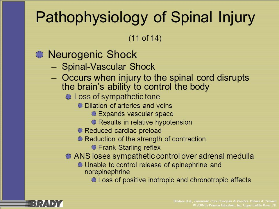 Pathophysiology of Spinal Injury (11 of 14)
