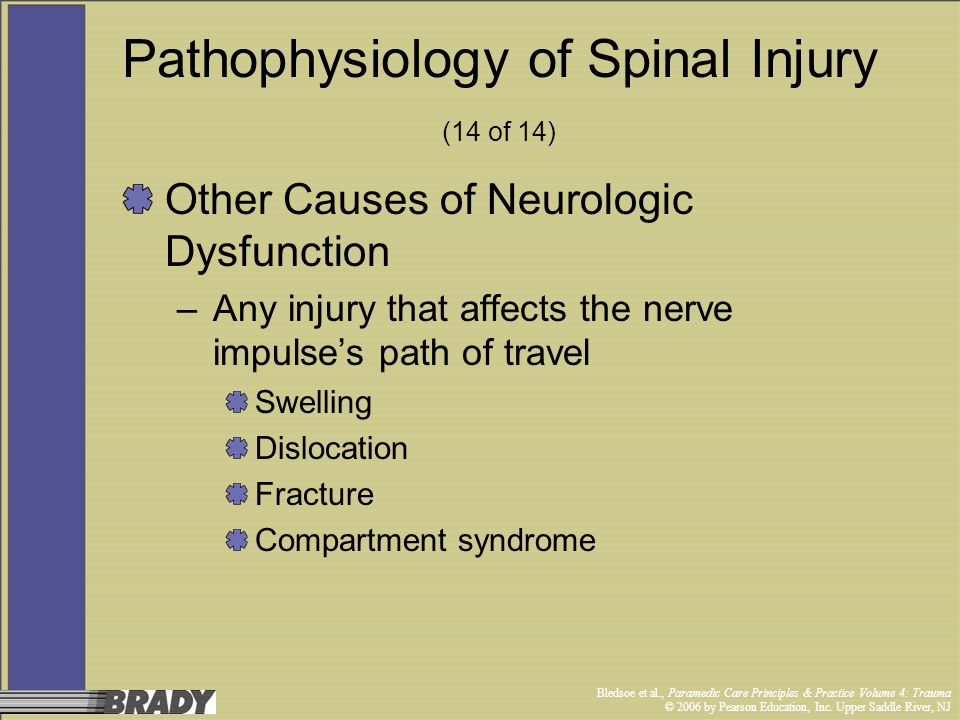Pathophysiology of Spinal Injury (14 of 14)