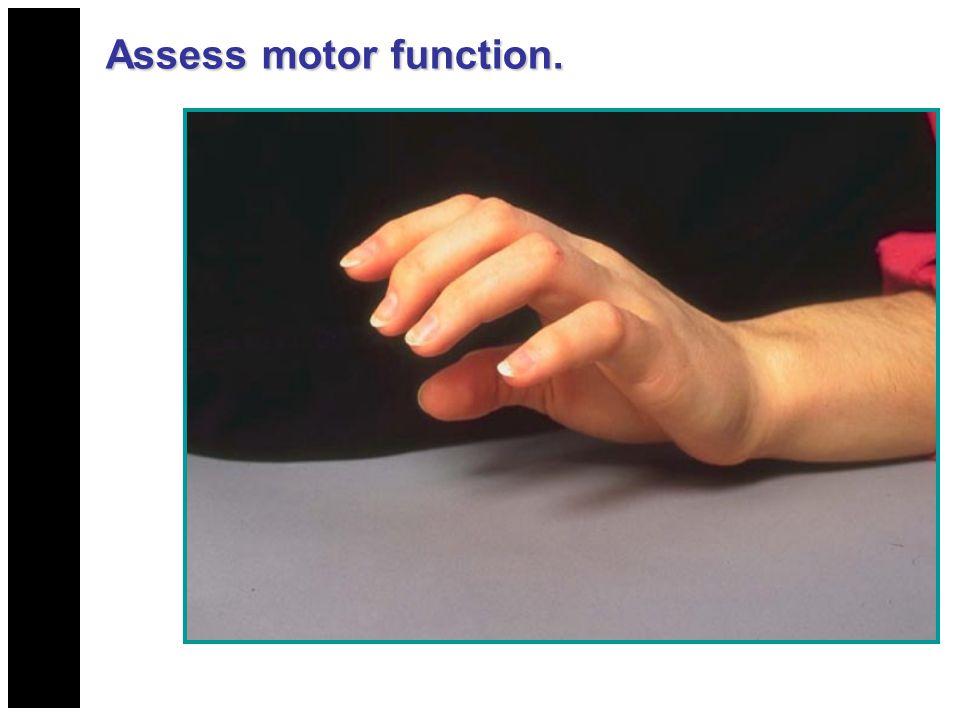 Assess motor function.