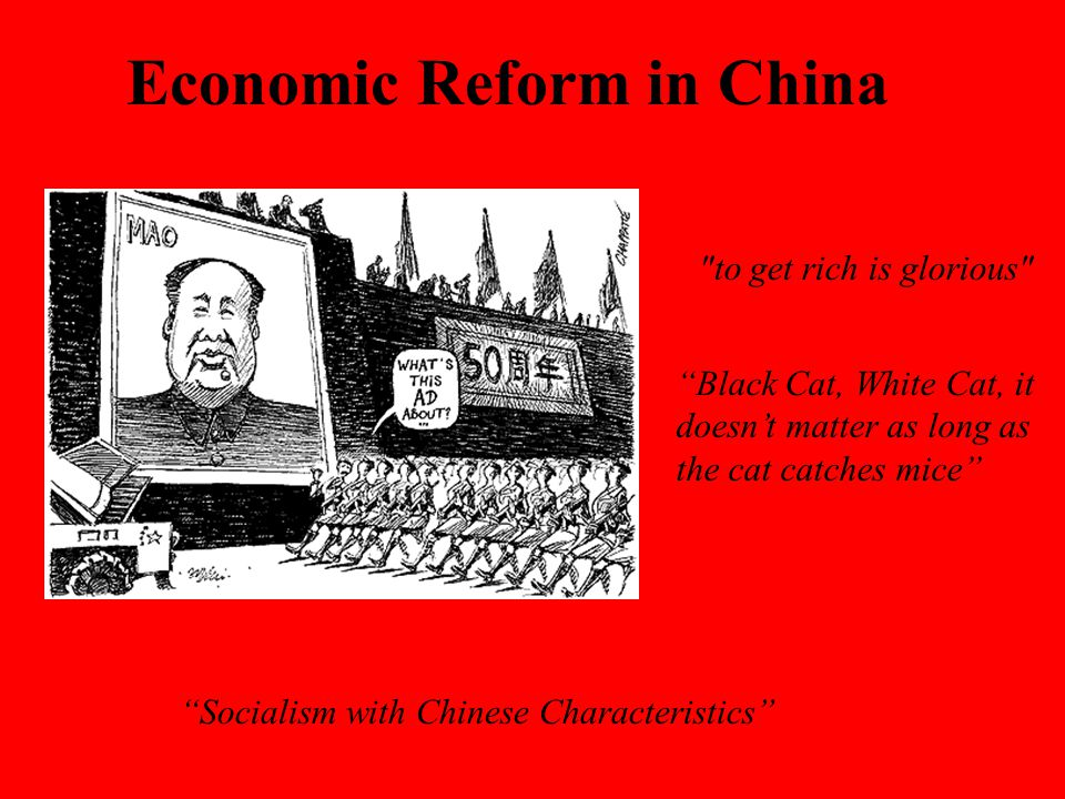 Economic Reform in China