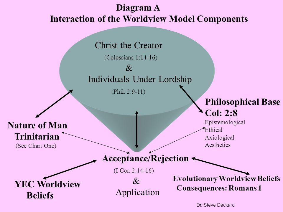 Interaction of the Worldview Model Components