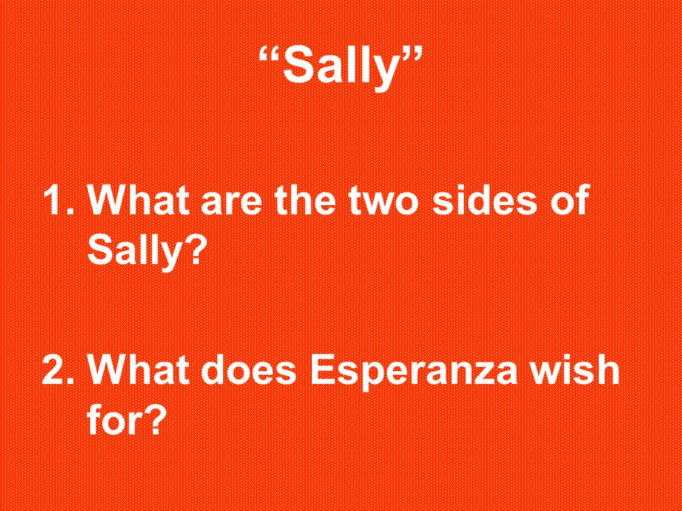 Sally What are the two sides of Sally What does Esperanza wish for