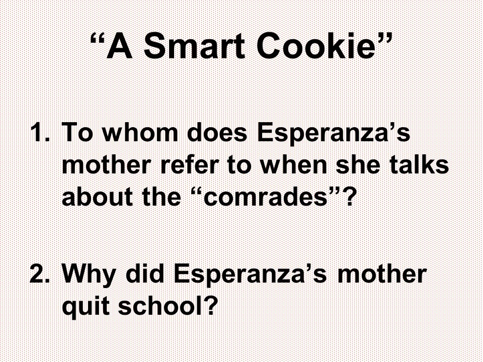 A Smart Cookie To whom does Esperanza's mother refer to when she talks about the comrades .