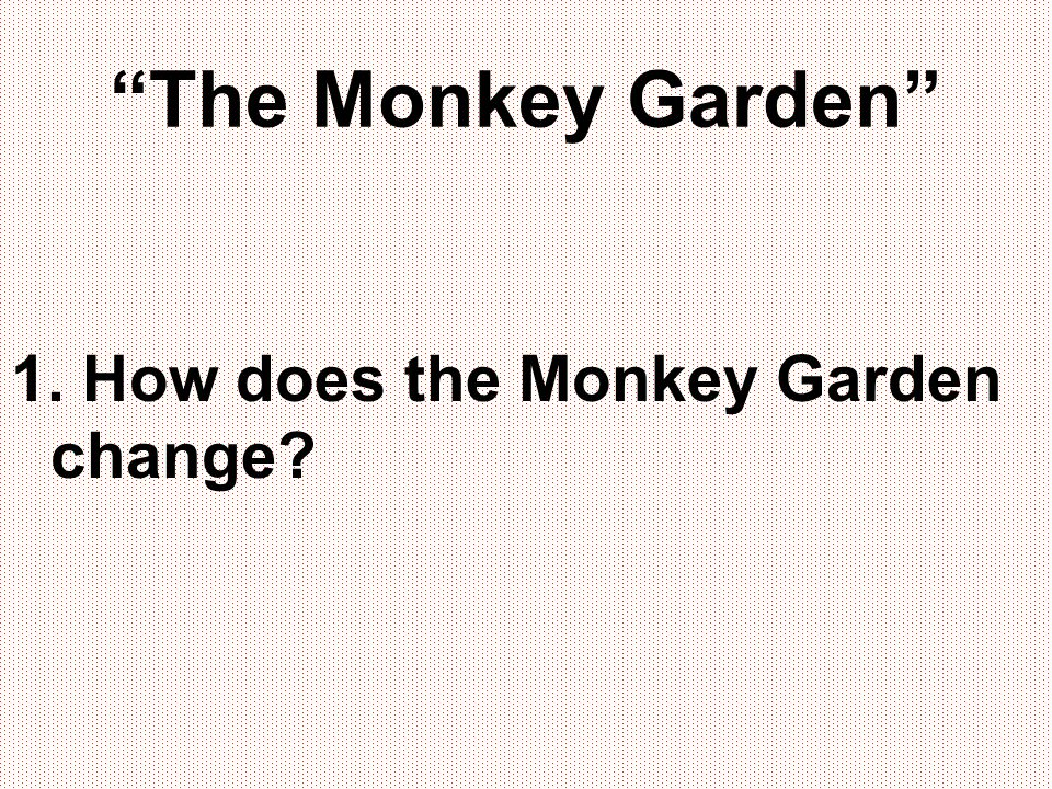 The Monkey Garden 1. How does the Monkey Garden change