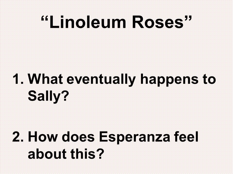 Linoleum Roses What eventually happens to Sally