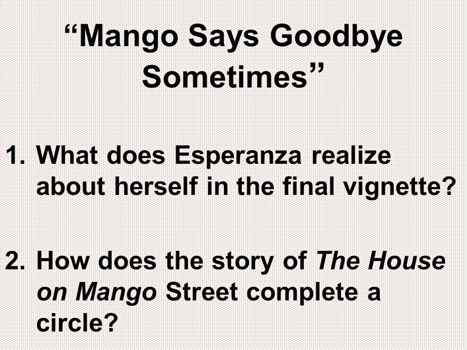 Mango Says Goodbye Sometimes