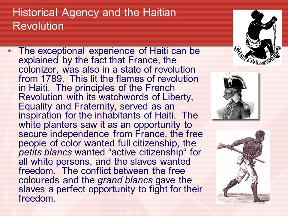 Historical Agency and the Haitian Revolution