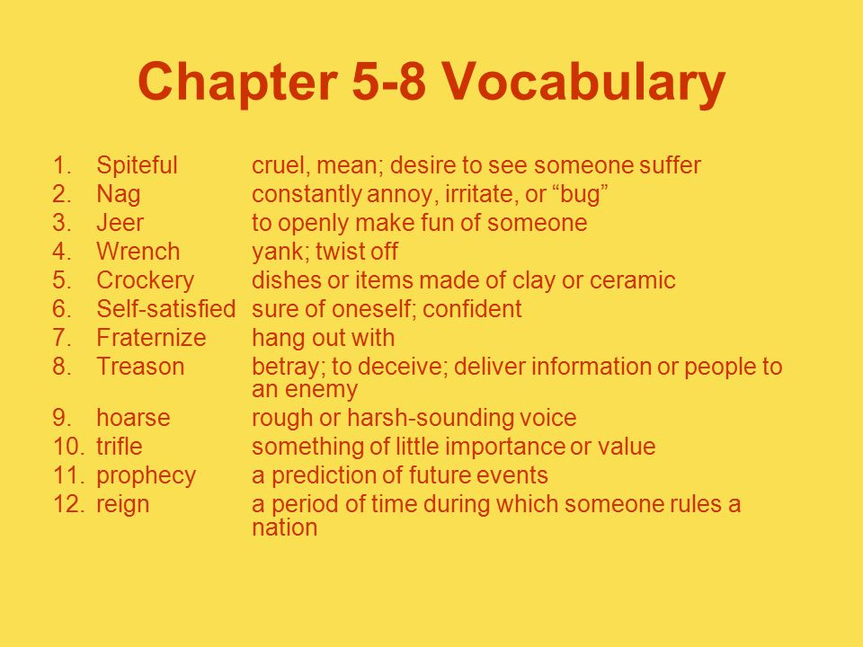 Chapter 5-8 Vocabulary Spiteful cruel, mean; desire to see someone suffer. Nag constantly annoy, irritate, or bug