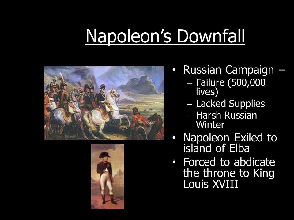 Napoleon's Downfall Russian Campaign –