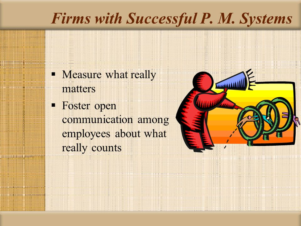Firms with Successful P. M. Systems