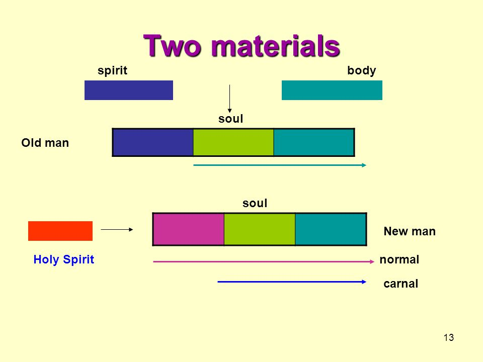 Two materials spirit body soul Old man soul New man Holy Spirit normal
