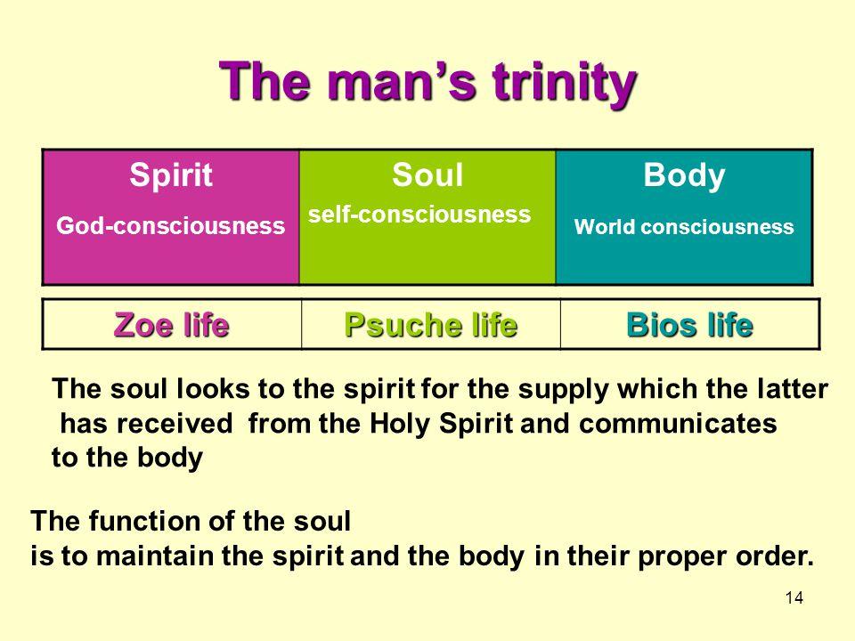 The man's trinity Spirit Soul Body Zoe life Psuche life Bios life