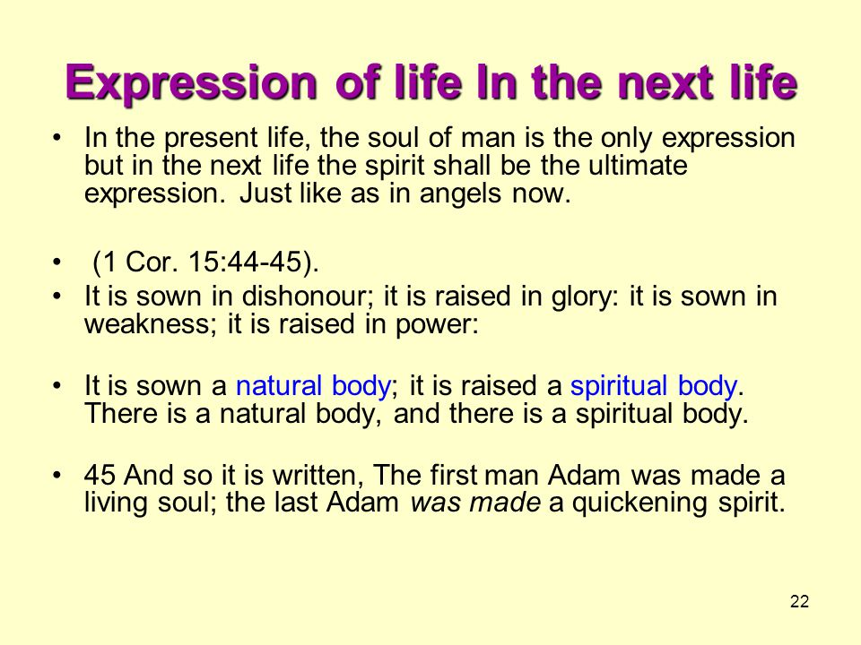 Expression of life In the next life