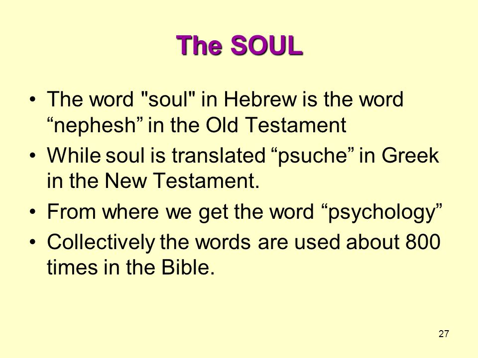 The SOUL The word soul in Hebrew is the word nephesh in the Old Testament. While soul is translated psuche in Greek in the New Testament.