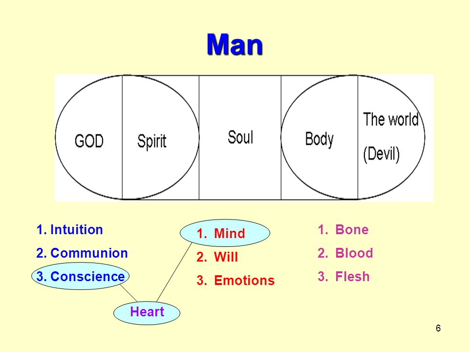 Man 1. Intuition 2. Communion 3. Conscience Bone Blood Flesh Mind Will