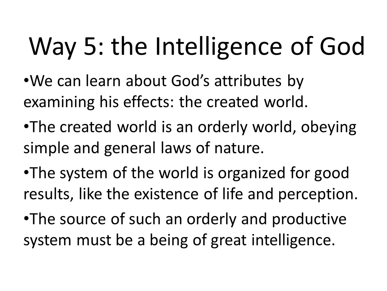 Way 5: the Intelligence of God