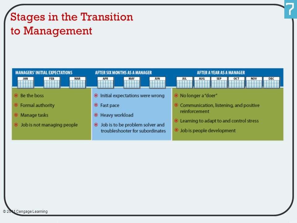 Stages in the Transition to Management