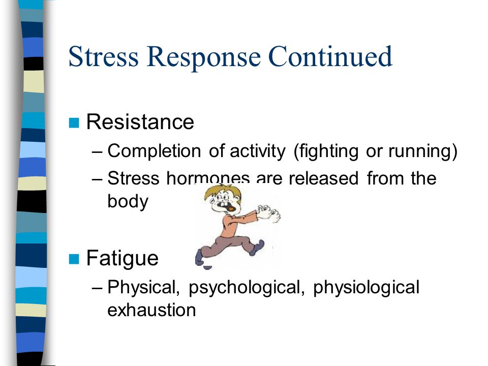 Stress Response Continued