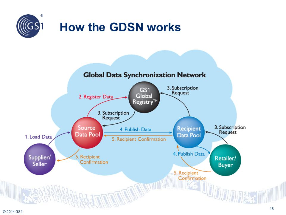 How the GDSN works