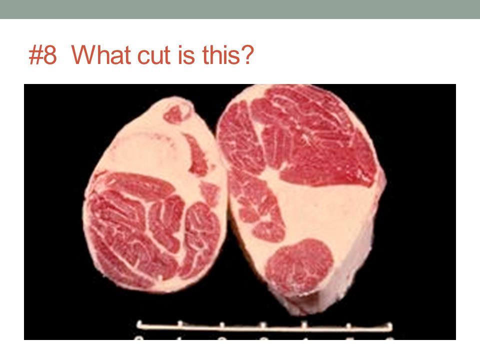 #8 What cut is this