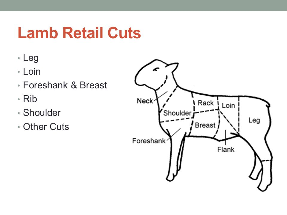 Lamb Retail Cuts Leg Loin Foreshank & Breast Rib Shoulder Other Cuts