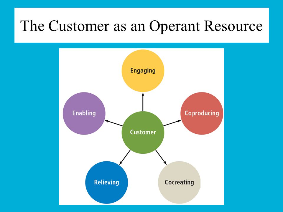 The Customer as an Operant Resource