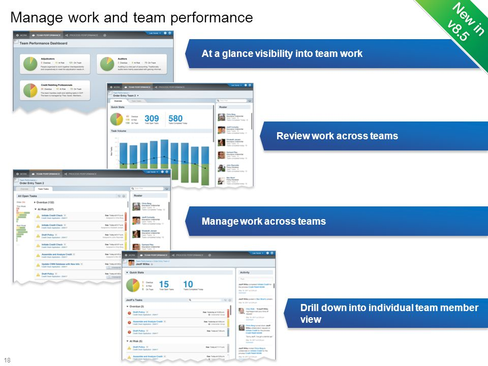 Manage work and team performance