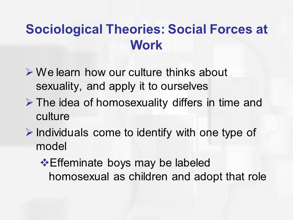 Sociological Theories: Social Forces at Work