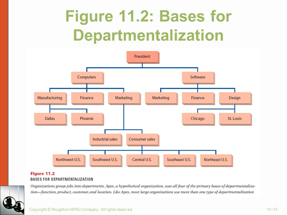Figure 11.2: Bases for Departmentalization