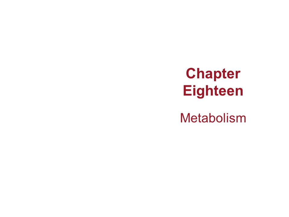 Chapter Eighteen Metabolism