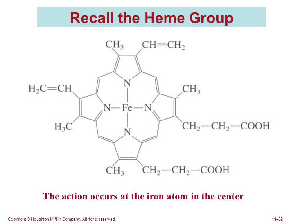 Recall the Heme Group The action occurs at the iron atom in the center