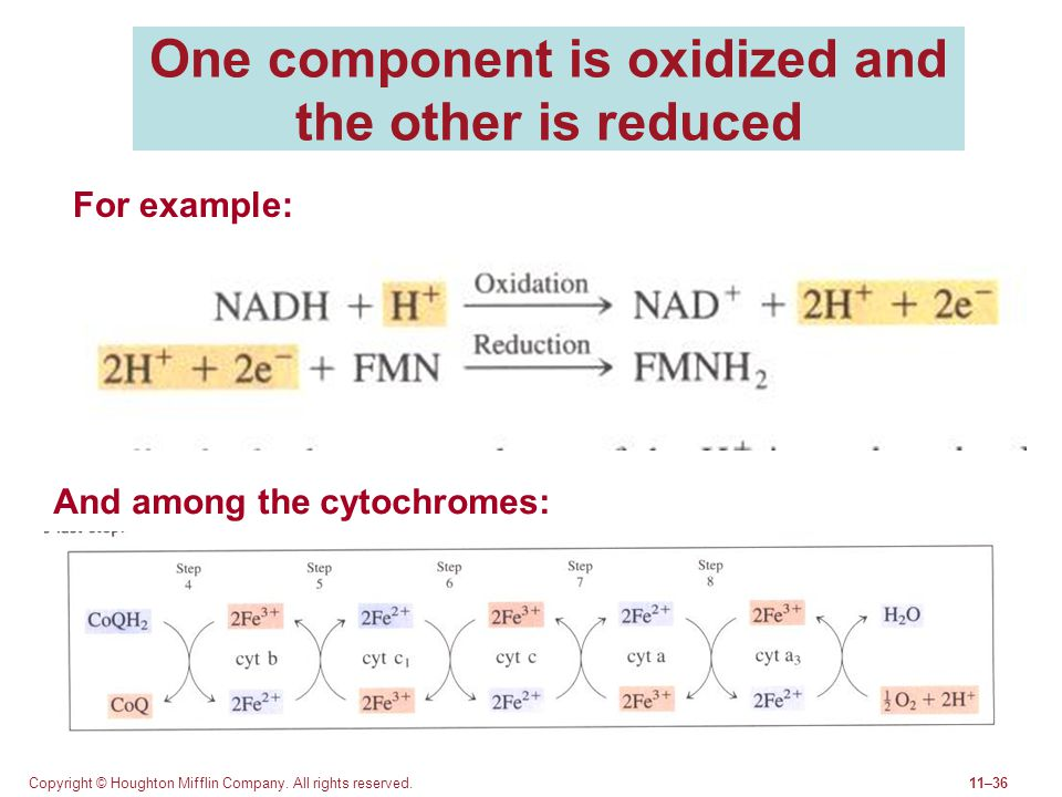 One component is oxidized and the other is reduced