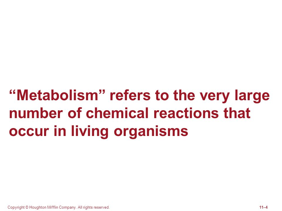 Metabolism refers to the very large number of chemical reactions that occur in living organisms