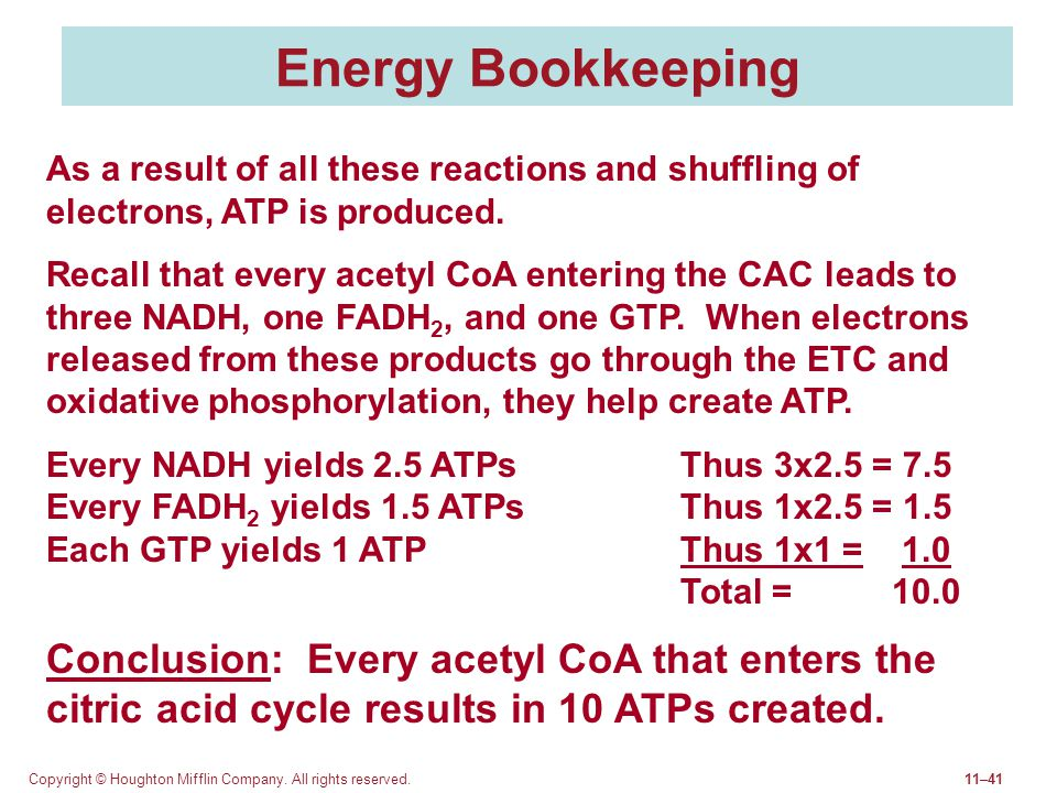 Energy Bookkeeping As a result of all these reactions and shuffling of electrons, ATP is produced.