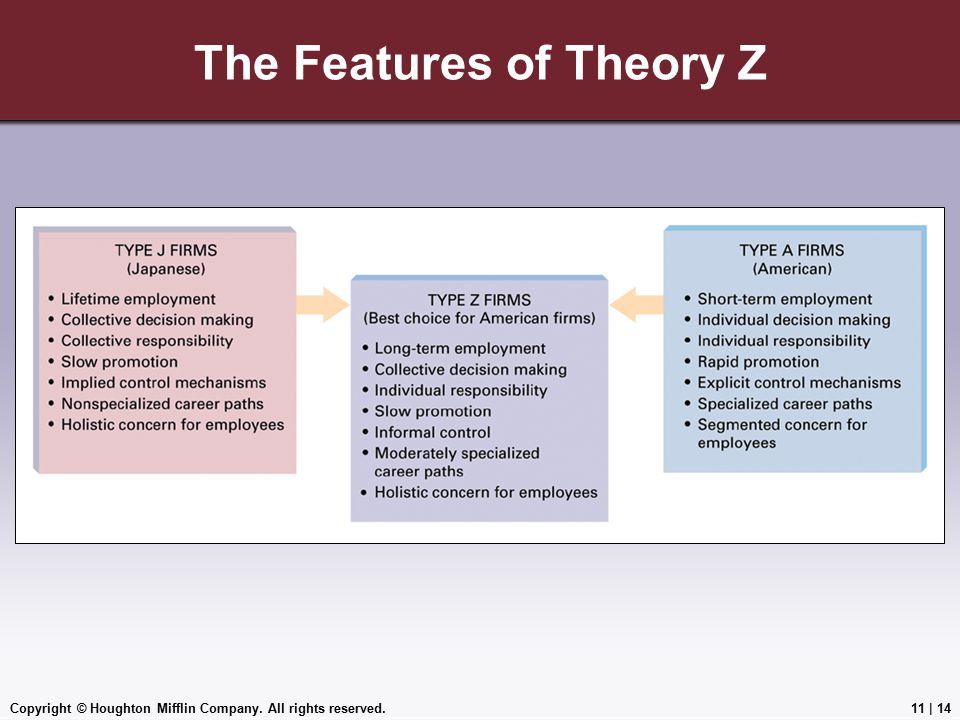 The Features of Theory Z