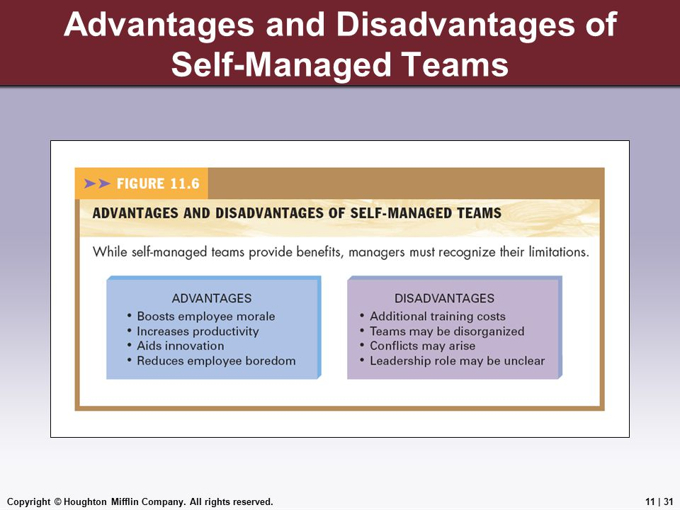 Advantages and Disadvantages of Self-Managed Teams