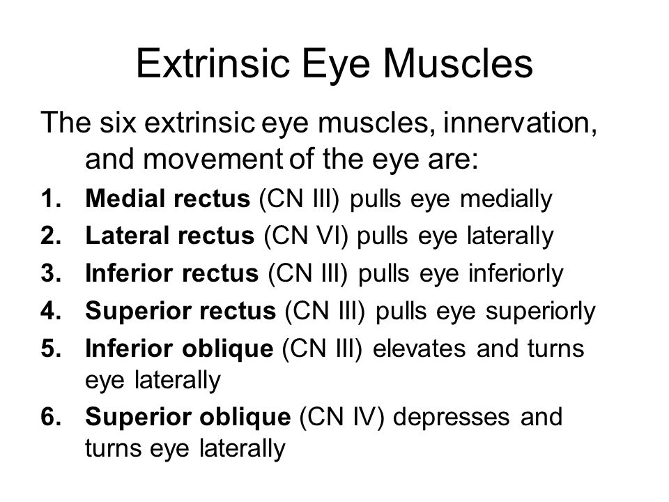 Extrinsic Eye Muscles The six extrinsic eye muscles, innervation, and movement of the eye are: Medial rectus (CN III) pulls eye medially.