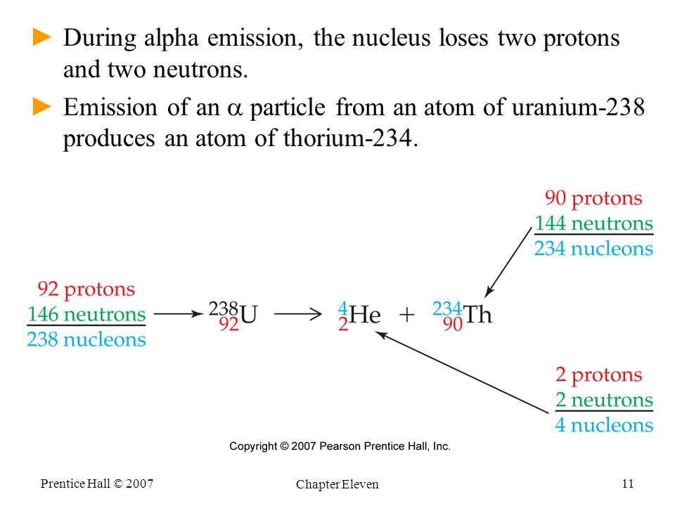 During alpha emission, the nucleus loses two protons and two neutrons.