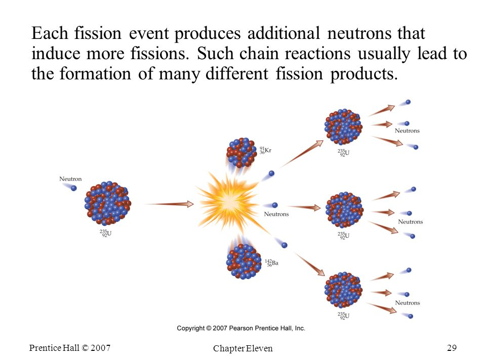 Each fission event produces additional neutrons that induce more fissions. Such chain reactions usually lead to the formation of many different fission products.