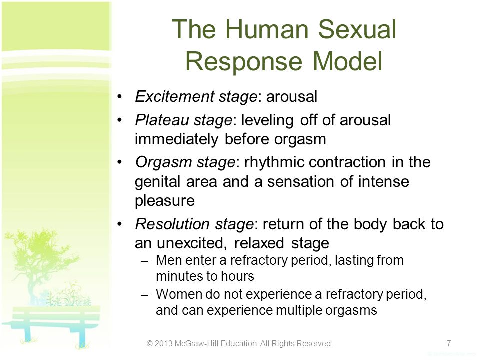 The Human Sexual Response Model