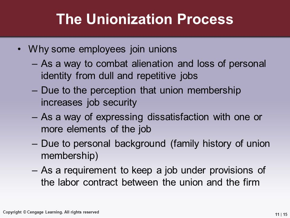 The Unionization Process