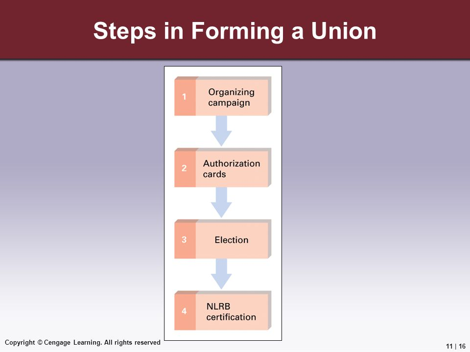 Steps in Forming a Union