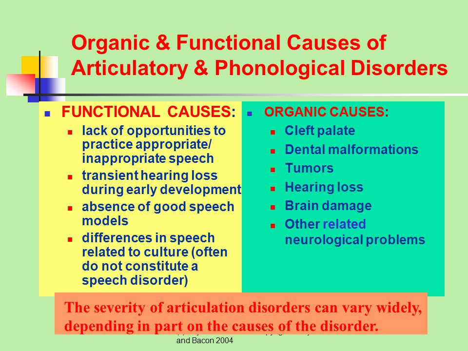 Organic & Functional Causes of Articulatory & Phonological Disorders