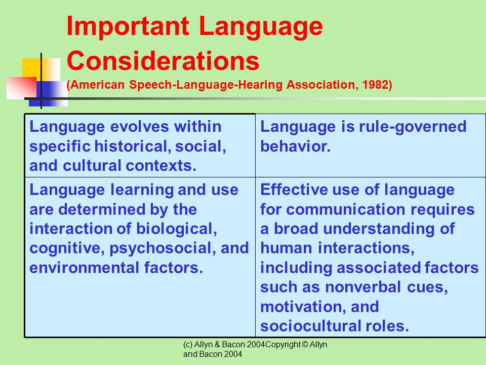 Important Language Considerations (American Speech-Language-Hearing Association, 1982)