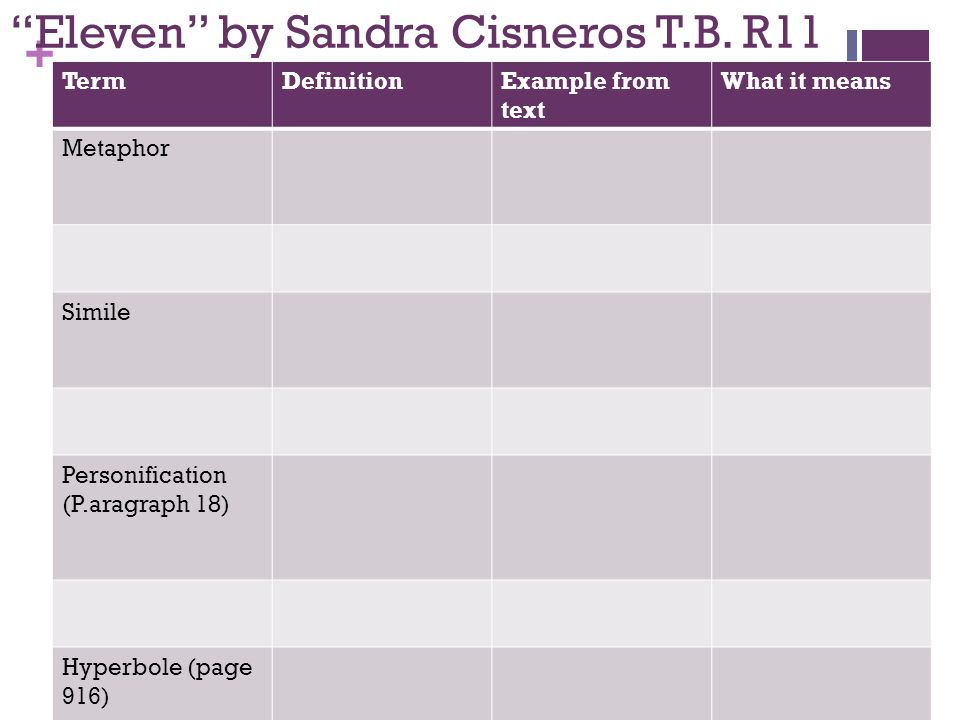 eleven by sandra cisneros essay